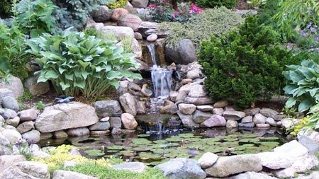 how to keep a large pond clean