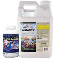 Algae Treatments