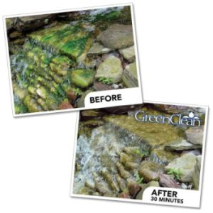 GreenClean before and after picture